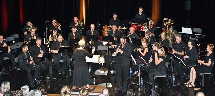 Philharmonistes des Pays de Vaucluse en concert 1er octobre 2014 Photo via Facebook
