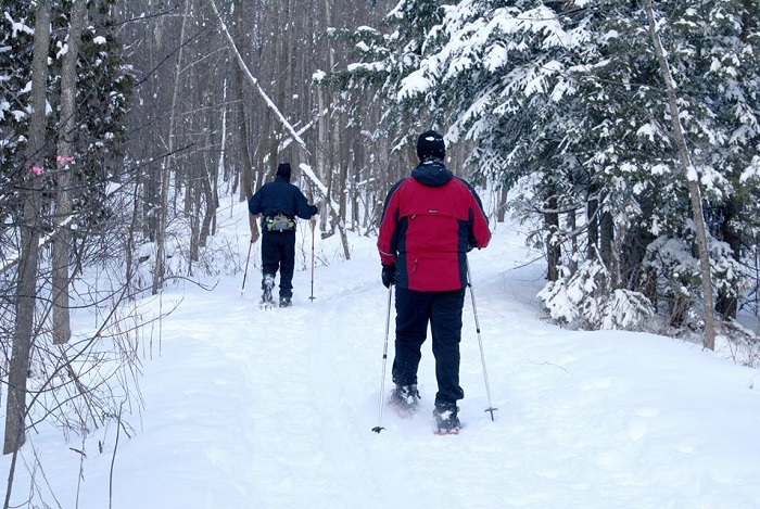 Sentiers de L Escapade du mont Rigaud hiver sortie en raquettes Photo courtoisie