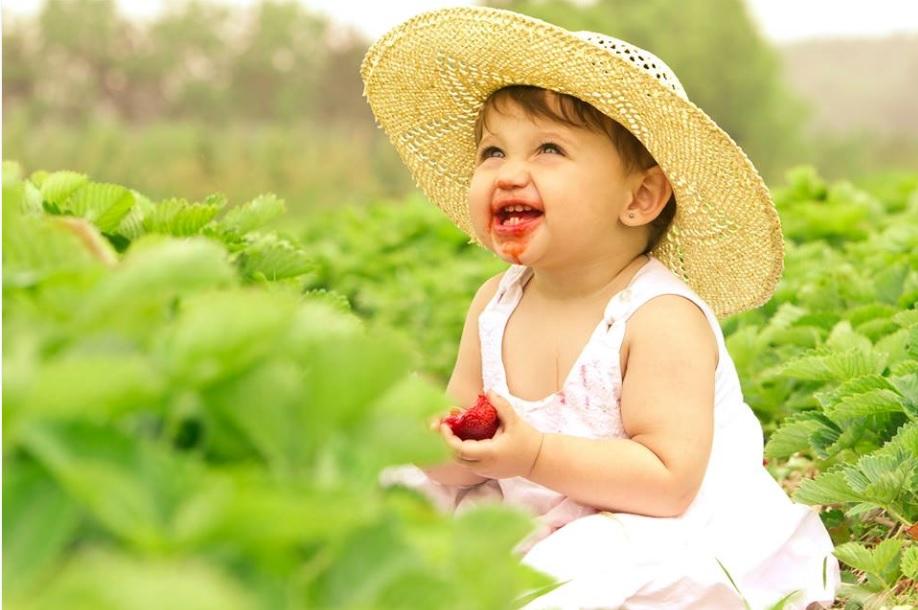 Ferme_Quinn-bebe-enfant-fraise-photo-Tourisme_Suroit-publiee-par-INFOSuroit_com