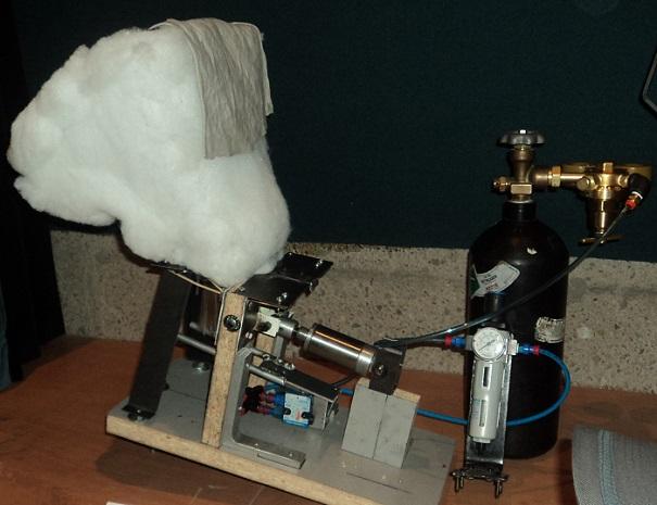 Science on tourne L Ours polaire des etudiants du College de Valleyfield Photo courtoisie