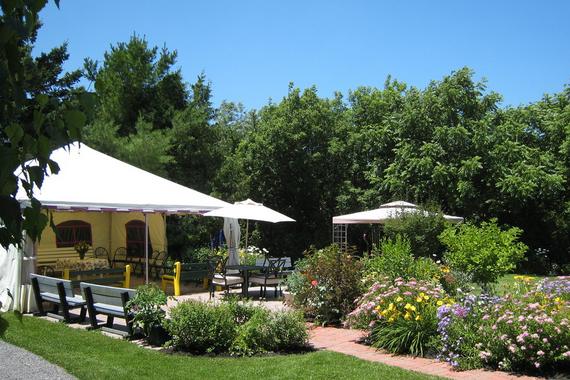 Jardin et terrasse Brasserie_Saint_Antoine_Abbe Photo site web BSAA