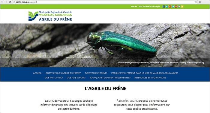 agrile du frene site web MRC VS Capture d ecran