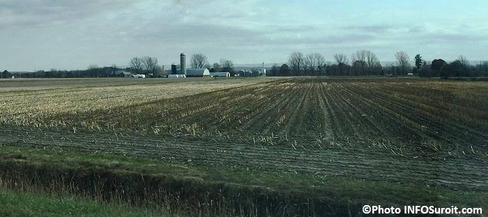 agriculture ferme et terre agricole pres de Ormstown automne Photo INFOSuroit_com