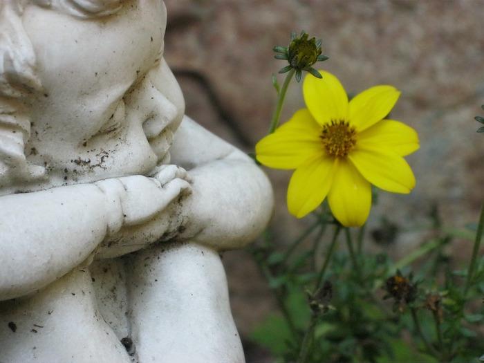 cherubin ange fleur deuil Photo Pixabay via INFOSuroit