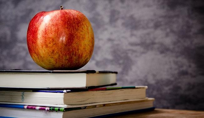 ecole education encouragement pomme livres Photo Pixabay via INFOSuroit