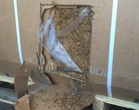 saisie tabac de contrebande tabac en vrac boite de la remorque du camion Photo courtoisie SQ publiee par INFOSuroit_com