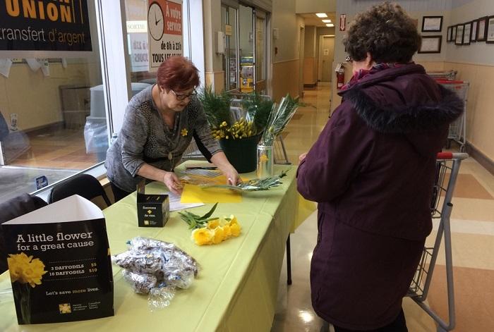 benevole scc vente jonquilles pour lutte contre cancer Photo courtoisie