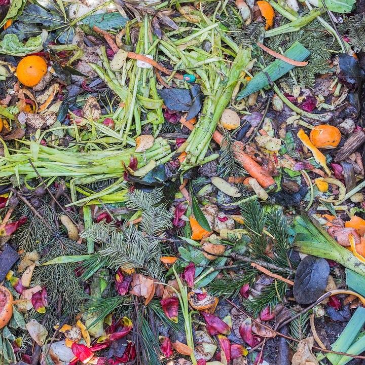 compostage-dechets-organiques-matieres-residuelles-photo-pixabay-publiee-par-infosuroit-com