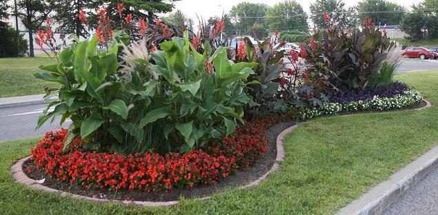 fleurs amenagement a Chateauguay Fleurons du Quebec Photo courtoisie Ville Chateauguay