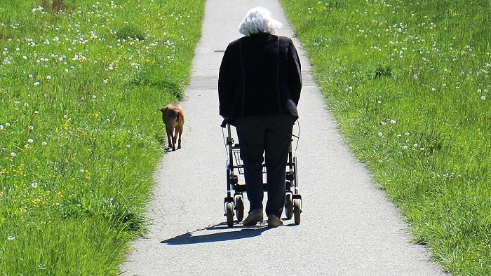 personne agee avec deambulateur et chien marche de sante Photo Pixabay via INFOSuroit