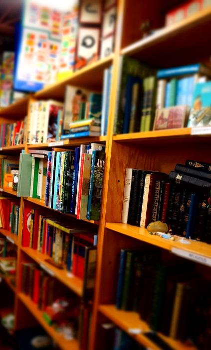 bibliotheque livres enfants Photo Pixabay via INFOSuroit_com