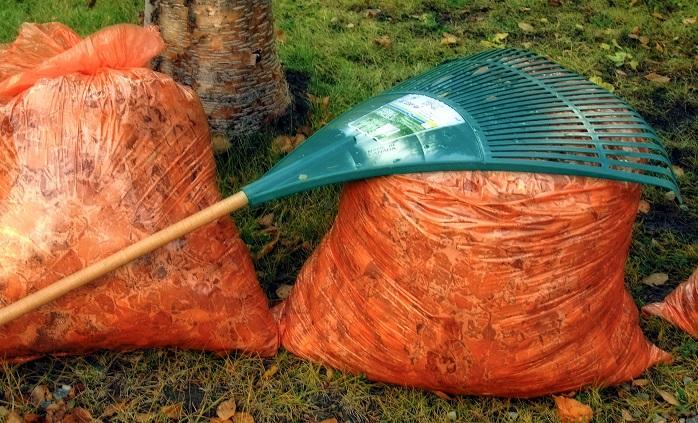 feuilles-mortes-sacs-plastiques-orange-automne-photo-pixabay-via-infosuroit_com