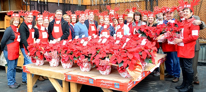 poinsettias-2016-fondation-maison-soins-palliatifs-vs-photo-courtoisie