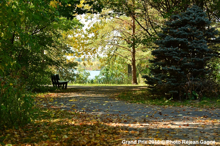un_banc_invitant-copyright-photo-rejean_gagne-courtoisie-mrc