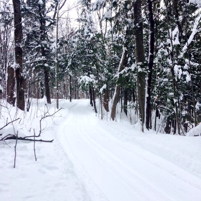 Bois_Robert neige hiver sentier Photo courtoisie Ville Beauharnois