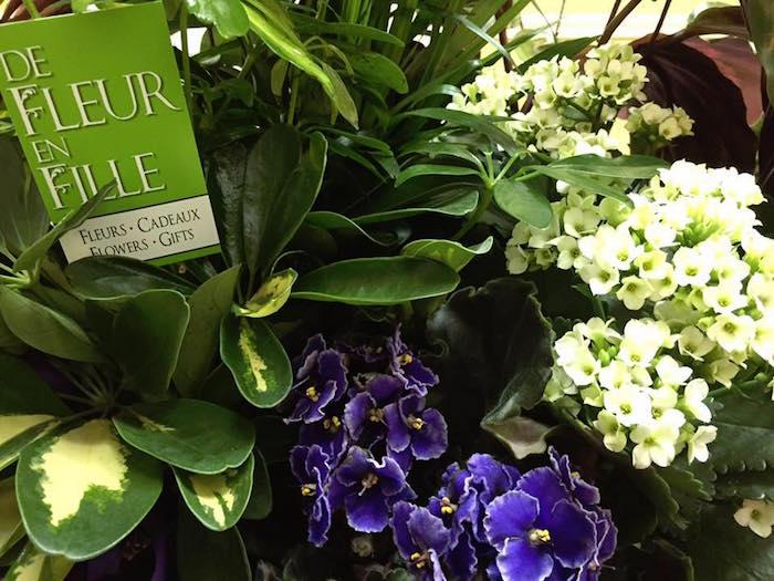 fleurs et plantes vivaces De Fleur en Fille Huntingdon Photo courtoisie via CLD
