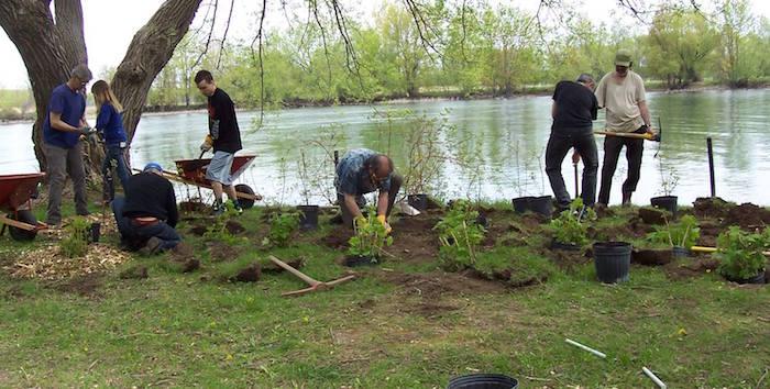 plantation arbres juin 2016 riviere chateauguay Photo courtoisie ARRC