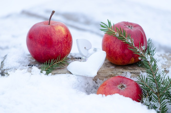pommes hiver neige agroalimentaire photo Flyfishinghut via Pixabay CC0 et INFOSuroit