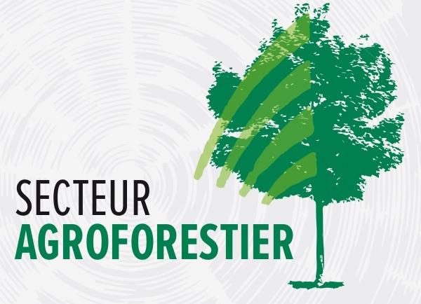 visuel secteur agroforestier Coop Unifrontieres publie par INFOSuroit