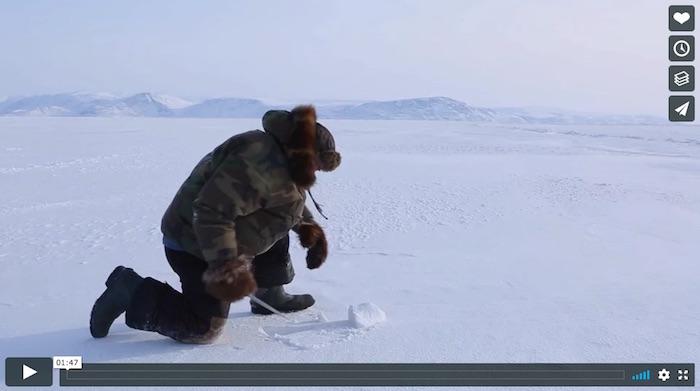 bande-annonce Inuk en colere via ONF et Vimeo