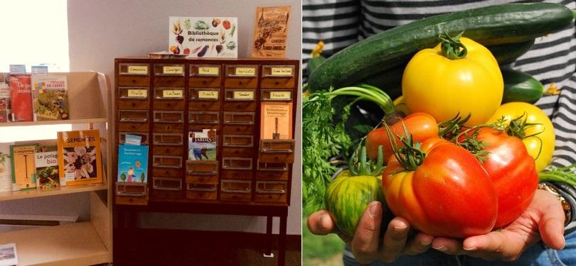 bibliotheque de semences incroyables comestibles a la biblio du secteur St-Timothee a Valleyfield photo courtoisie et legumes photo Pixabay