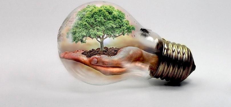 changements climatiques nature bulle-de-verre photo Thommas68 via Pixabay CC0 et INFOSuroit