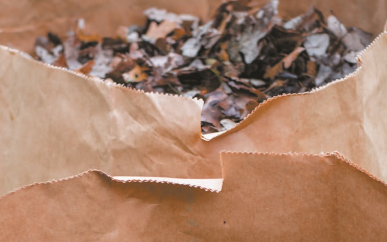 collecte de residus verts feuilles mortes pelouse sac papier copyright photo Ville Vaudreuil-Dorion extrait affiche 2018
