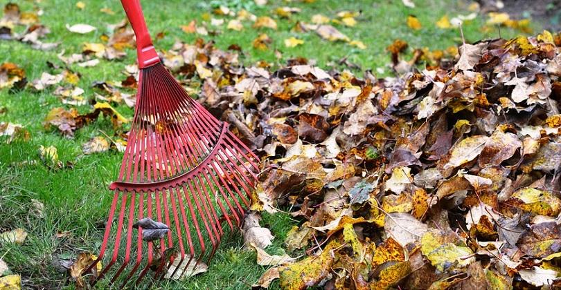 rateau feuilles menage printemps automne photo UtroJa0 via Pixabay CC0 et INFOSuroit