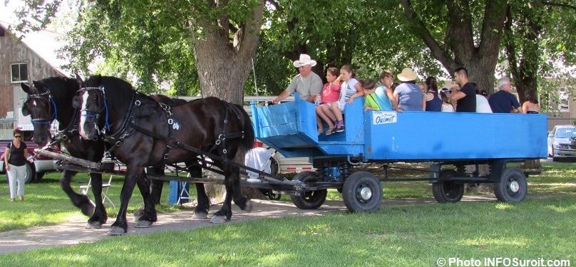Fete familiale de Saint-Louis-Gonzague tour carrioles chevaux familles photo INFOSuroit