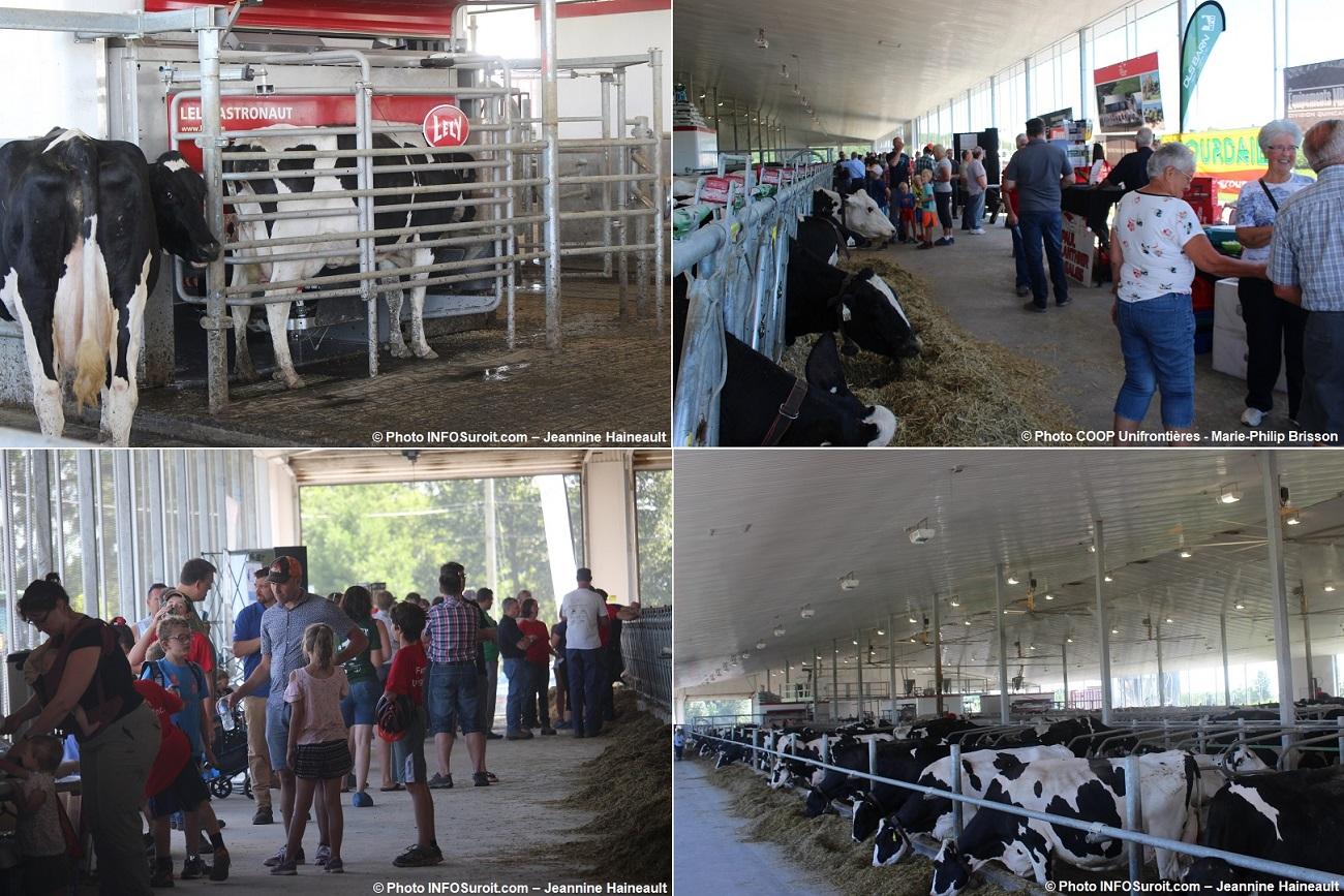 fete 2018 Coop Unifrontieres Ferme Lavigne etable vaches visiteurs kiosque photos INFOSuroit-Jeannine_Haineault et Coop_Unifrontieres-Marie-Philip_Brisson