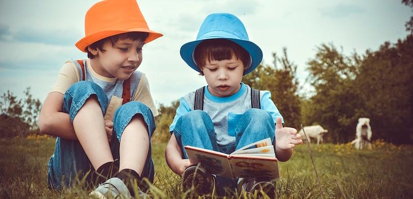 lecture saison estivale ete gardons livre photo Victoria_Borodinova via Pixabay CC0 et INFOSuroit