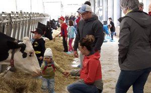 portes ouvertes sur les fermes visiteur vaches photo UPA_Monteregie