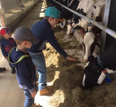 ferme Jorica Rigaud Portes ouvertes sur fermes 2018 photo via UPA