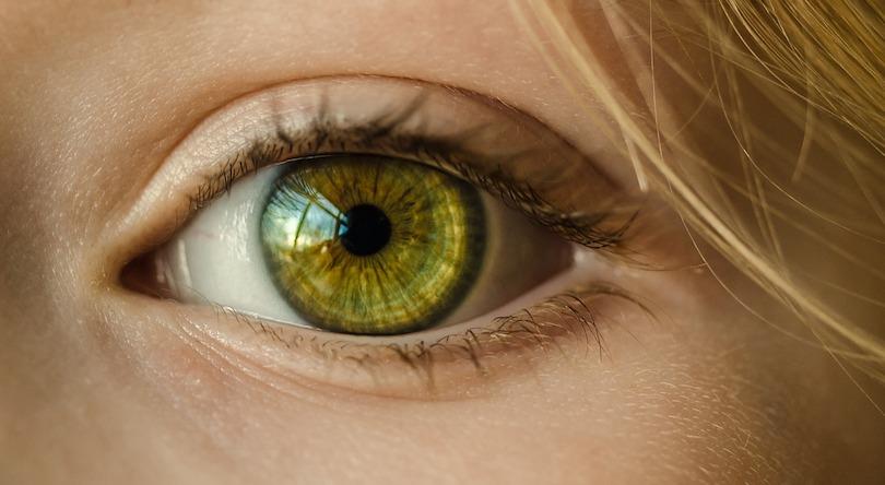 oeil vision look image photo Skitterphoto via Pixabay CC0 et INFOSuroit