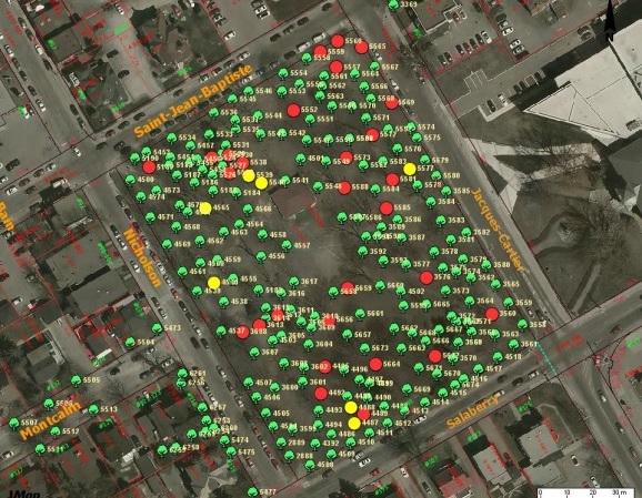 carte des arbres du parc Salaberry a Valleyfield en rouge arbres dangereux visuel SdV