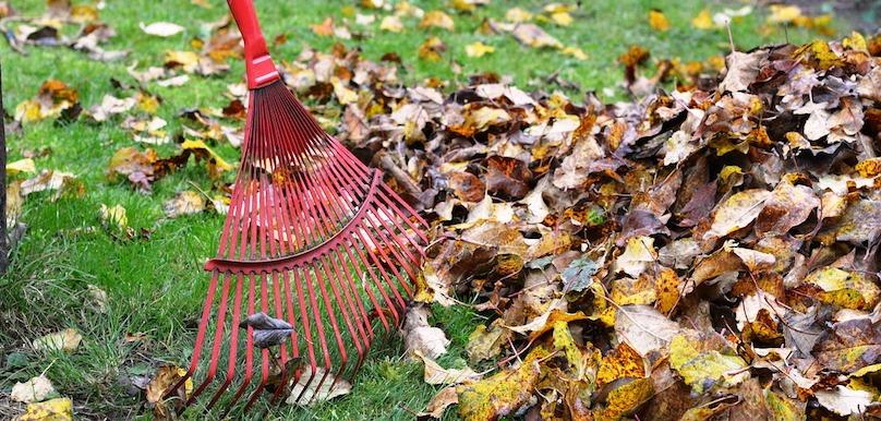feuilles rateau automne residus verts gazon photo Utroja0 via Pixabay CC0 et INFOSuroit