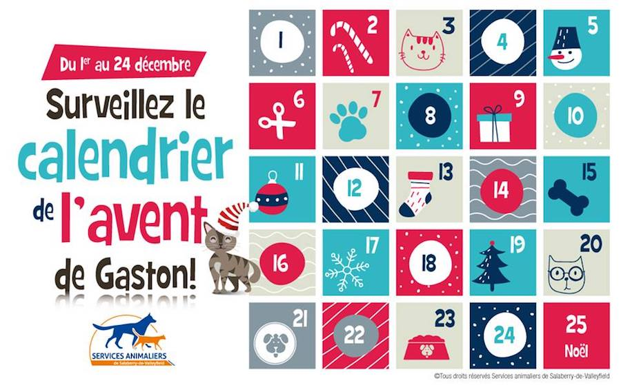 calendrier de _l_avent des Services animaliers valleyfield photo courtoisie