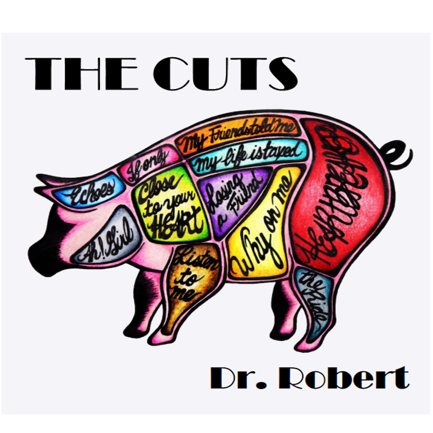pochette disque Dr_Robert The cuts dec 2018 visuel via FAL