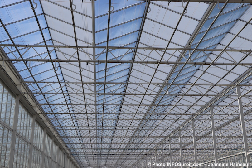 panneaux de toit usine TGOD cannabis Valleyfield fev2019 photo JHaineault INFOSuroit
