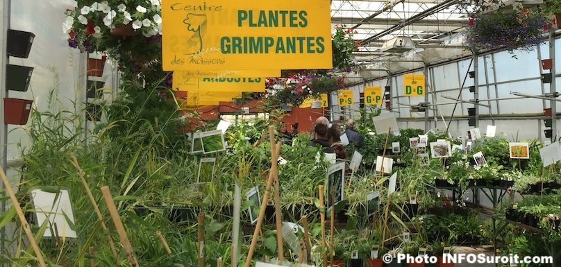 Centre des Moissons expo vente moisson en fleurs plantes photo INFOSuroit
