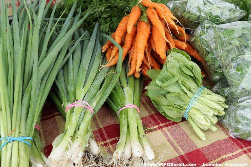 legumes frais carottes echalottes Marche public Valleyfield 2019 Photo JH INFOSuroit