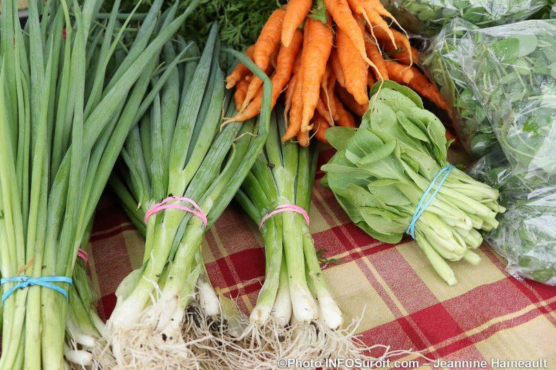 echalottes carottes pousses Marche Fermier 2019 photo JH INFOSuroit