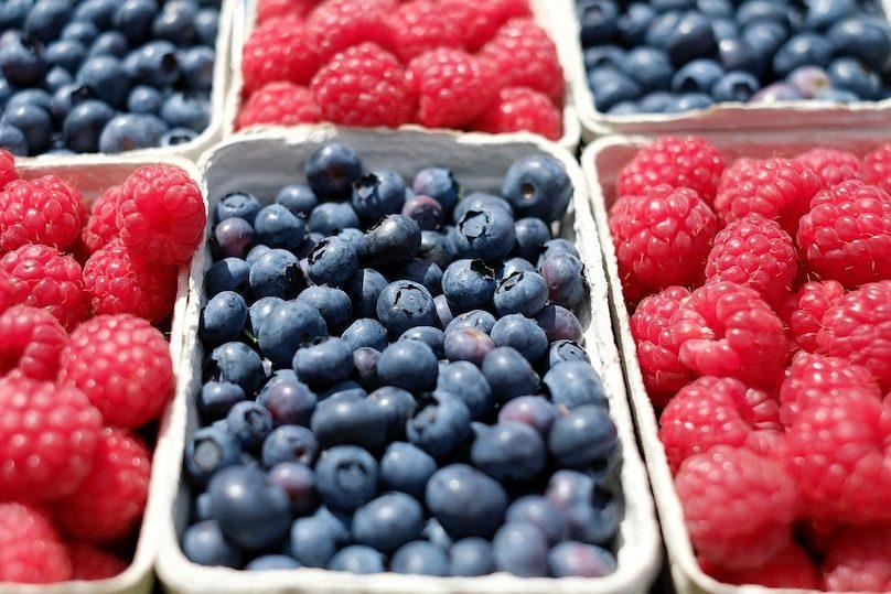 petits fruits framboises et bleuets photo 1195798 via Pixabay et INFOSuroit