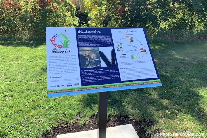 biodiversite riviere St-Charles Valleyfield panneau interpretation chaine alimentaire photo INFOSuroit