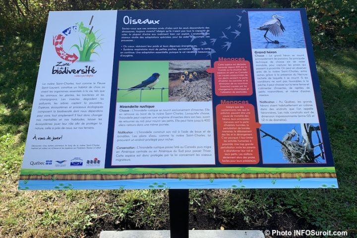 biodiversite riviere St-Charles Valleyfield panneau interpretation oiseaux photo INFOSuroit