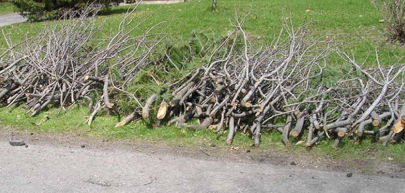collecte de branches ville de Chateauguay photo Ville