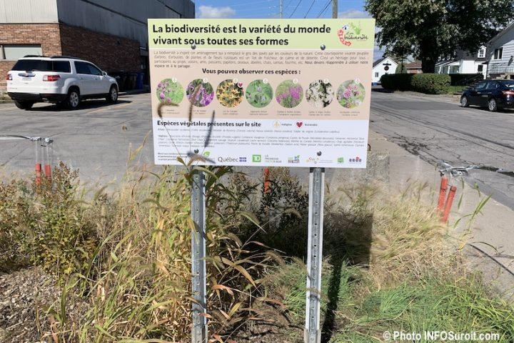 panneau biodiversite Place Viateur-Daignault a Valleyfield photo INFOSuroit