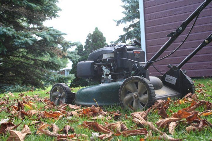 Residus verts feuilles mortes tondeuse photo MRC BHS
