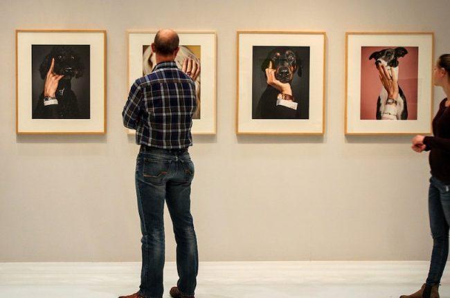exposition galerie art visteurs photo #D_Maennchen via Pixabay et INFOSuroit_com