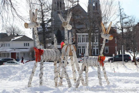 hiver-neige-decorations-bouleau-chevreuil-basilique-cathedrale-Valleyfield-photo-JH-INFOSuroit